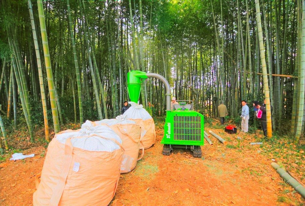 竹林整備 1