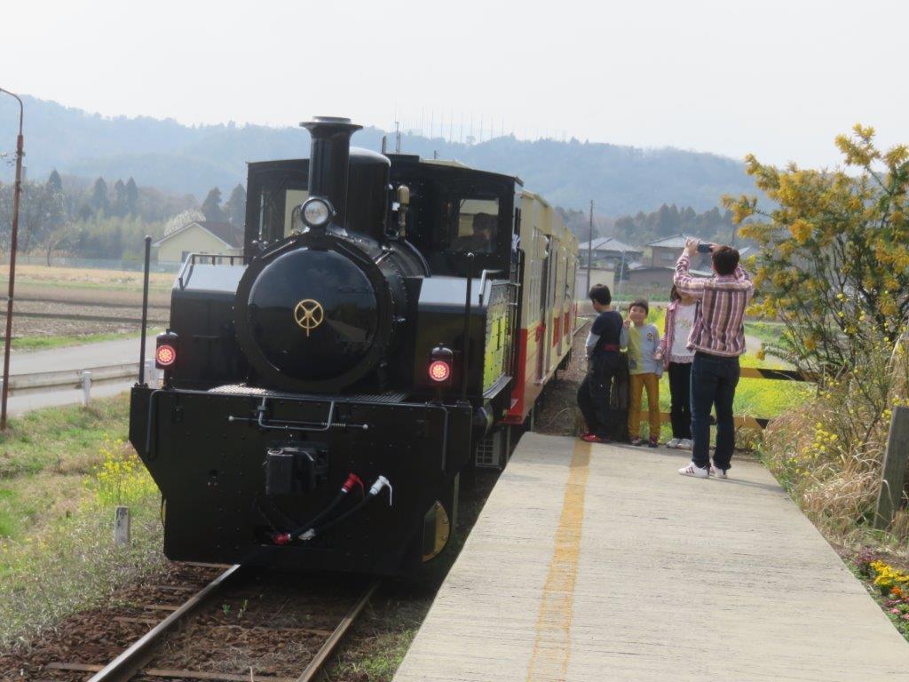 3月 里山トロッコ列車