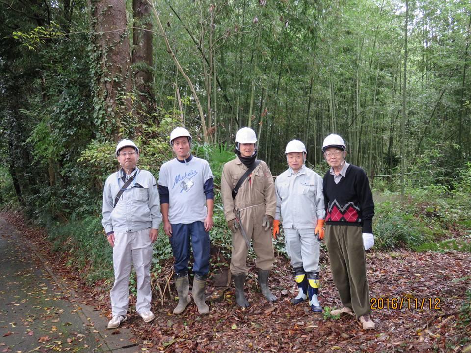 11月 竹林整備