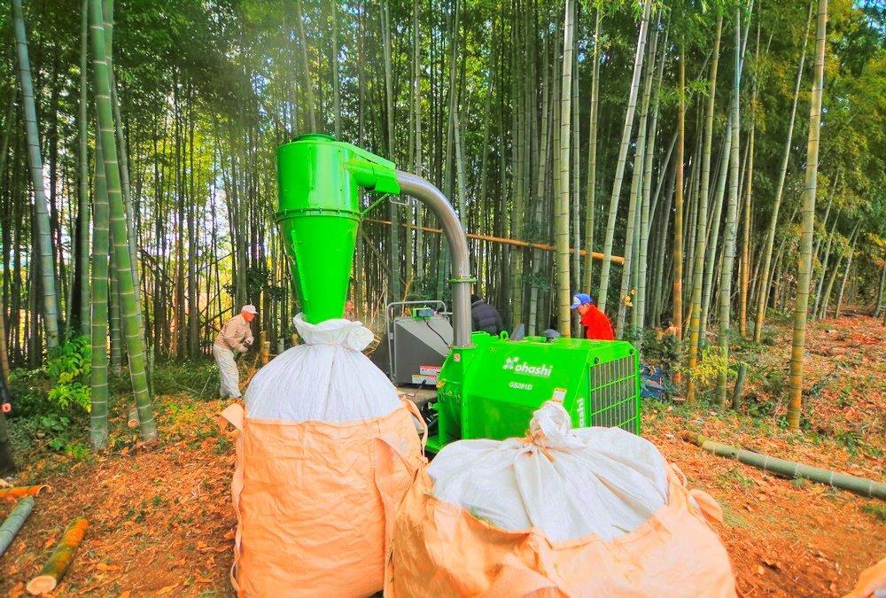 竹林整備 2