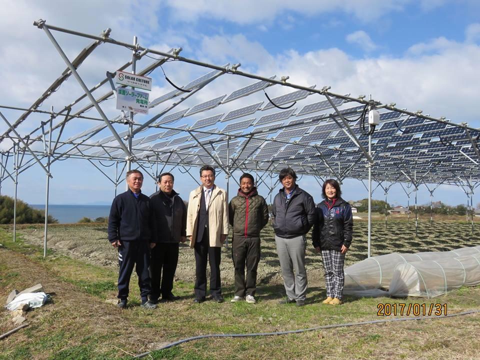 1月 淡路島ソーラーシェアリング 岡本様訪問