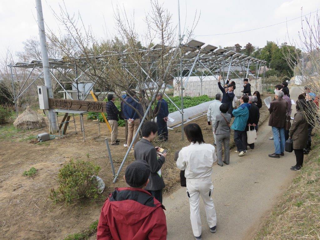 3月 ソーラーシェアリング交流会 2