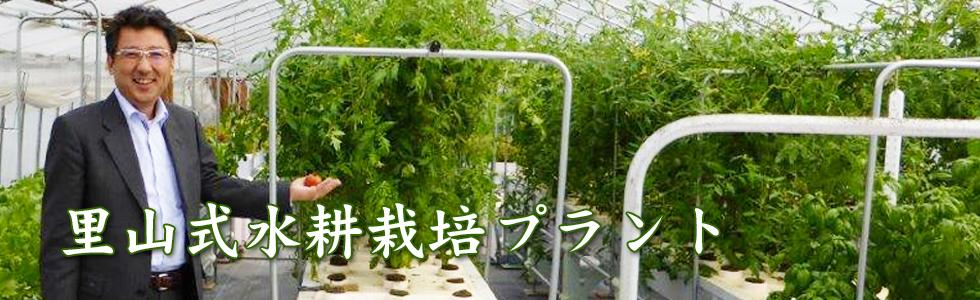 里山式水耕栽培プラント3