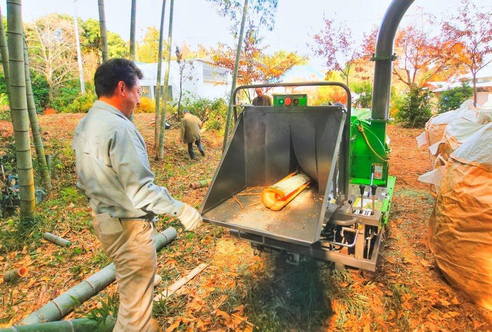 竹林整備 4