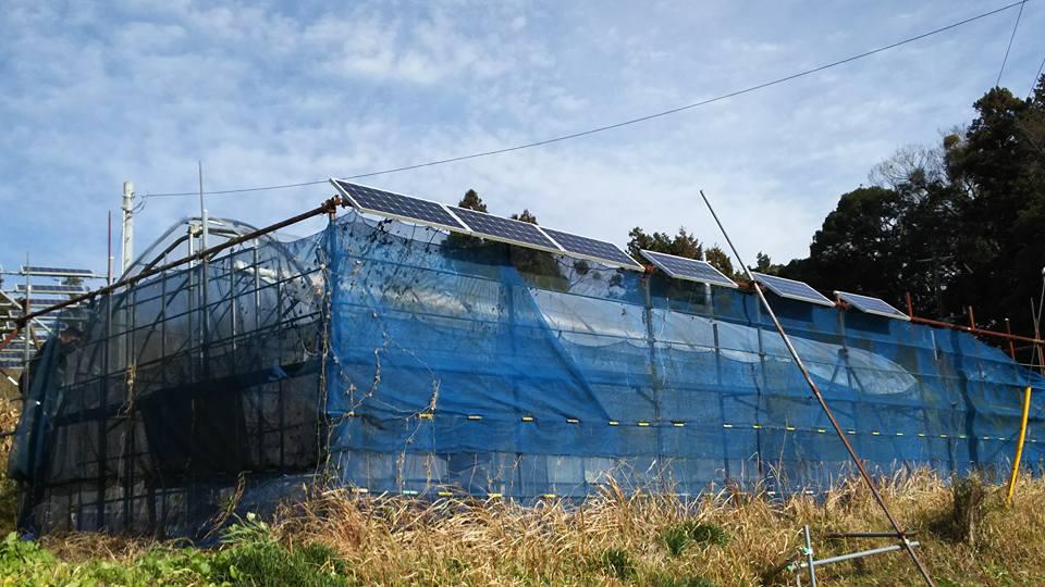 1月 太陽光発電とハウス