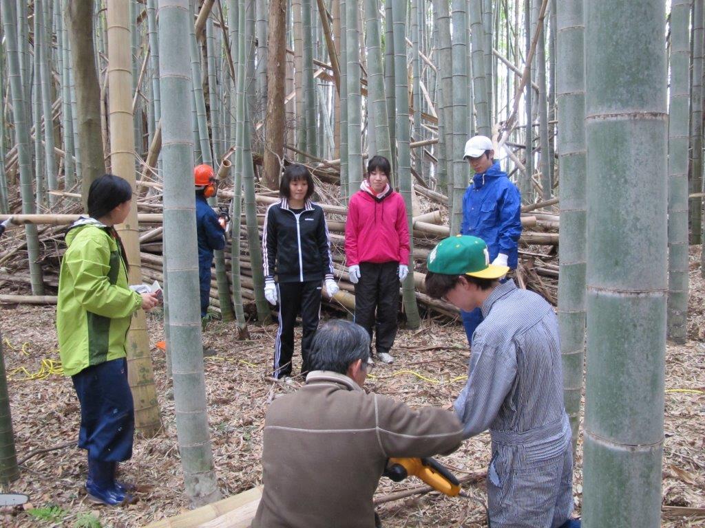 3月 東京農大生による竹林整備実習