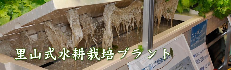 里山式水耕栽培プラント
